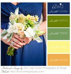 Colour Palette -Awd