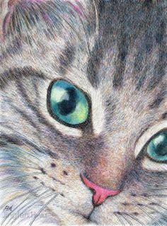 OOAK Original drawing cat art A Cute Tabby Cat grey by JingfenHwu