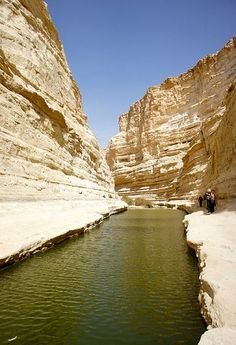Ein Avdat Canyon, Israel. ** - Explore the World with Travel Nerd Nici, one Country at a Time. http://TravelNerdNici.com