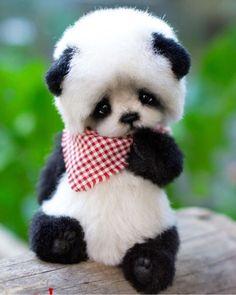 57 Best ideas for memes brasileiros animais Cute Panda Baby, Baby Animals Super Cute, Baby Panda Bears, Cute Little Animals, Cute Funny Animals, Baby Pandas, Niedlicher Panda, Panda Eyes, Panda Puppy