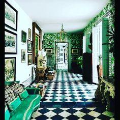 The gallery #lorenzocastillofe