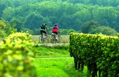 Entredeuxmers.com / Office de Tourisme