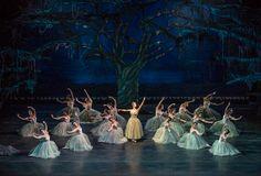 Artists as Wilis in Act 2 of Ballet de Santiago's Giselle. Photo by Patricio Melo