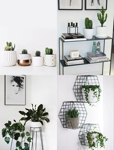 As plantas purificam o ambiente, saiba como decora-las no seu quarto. Plants purify the environment, learn how to decorate them in your room. Study Room Decor, Cute Room Decor, Room Ideas Bedroom, Bedroom Decor, Bedroom Small, Small Rooms, Master Bedroom, Tumblr Room Decor, Tumblr Rooms