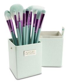 Purple and Teal 12-Piece Travel Brush Set