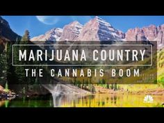 Harry Smith examines the issue of cannabis in the workplace, as Colorado employers work to reconcile a more-open cannabis culture with workplace rules that e...