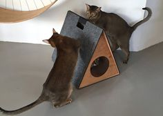 Here's your chance to save on a stylish hideaway for kitty! Holin Design is offering 25% off their Triangular Pet House in pink or yellow. Handcrafted in Poland, these cool cat houses are made from birch plywoodand covered in felt, perfect for scratching. It even has a built-in handle for easy carrying. Normally $100, get…