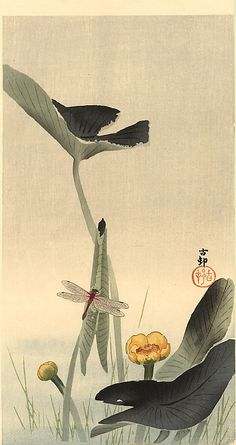 Dragonfly and Lotus, 1930 by Ohara Koson, Japan