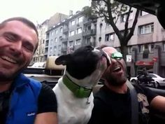 """Every Time They Hear """"Their"""" Song, They Start Singing, But His Dog's Vocals Crack Everyone Up!"""
