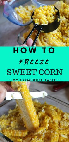 How To Freeze Sweet Corn The Best Way To Freeze Corn Fresh Corn on the Cob Homesteading Preserving Gardening Frozen Sweet Corn Recipe, Frozen Corn Recipes, Fresh Corn Recipes, Recipe With Fresh Corn, Recipes To Freeze, Canning Corn, Canning Recipes, Canning 101, Pressure Canning