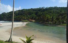 Praia de Jeribucaçu,I tacaré (BA) - Pesquisa Google