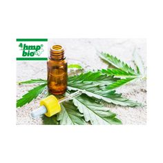 Hemp Oil, Nervous System, Romania, No Response, Stress, Healing, Medical, Website, Physiology