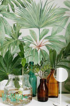 Tropical Pattern Wallpaper | Exotic Removable Wallpaper | Palm leaves Wallpaper…