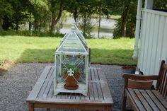 Ny uteplass. Terrarium, Gardening, Home Decor, Homemade Home Decor, Garten, Terrariums, Lawn And Garden, Decoration Home, Horticulture