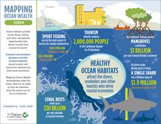 Coastal tourism relies on healthy marine habitat so let's protect our oceans #infographic