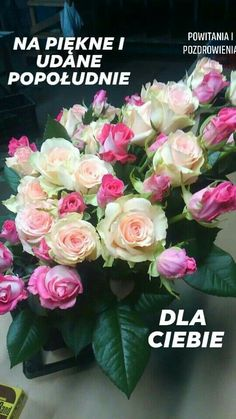 Dan, Floral Wreath, Rose, Flowers, Plants, Pictures, Photos, Pink, Roses