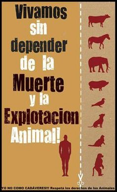 live without depending of animal death and exploitation. Save Animals, Animals And Pets, Vegan Quotes, Vegetarian Lifestyle, Wake Up Call, S Mo, Keep Calm And Love, Animal Rights, Vegan Life