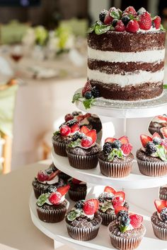 Naked cake and cupcakes with fruit topper, placed on a cupcake tree display.