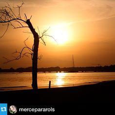 Espectacular @mercepararols ❤️ Gràcies per compartir amb nosaltres!! --- Posta sol a Roses #aRoses #visitRoses #revetlla2014 #recomanocostabravapirineu #revetllasantjoan #revetlla #sunset #incostabrava #colorscostabrava #descobreixcatalunya #clikcat