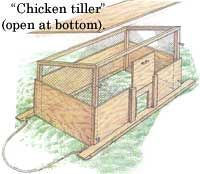 How to build fixed and mobile chicken pens, including size of chicken pens, using a chicken feeder and water font in the pens and a chicken-powered tiller. From MOTHER EARTH NEWS magazine.