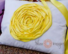 Bliss Images and Beyond: Master Bedroom Makeover - Decorative Pillow