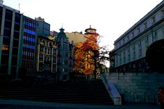"""El emblema de la ciudad """"El Carbayón"""" (roble), Oviedo, Principado de Asturias. Spain.    [By Valentin Enrique]."""
