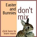 Rabbits are not toys. They are a commitment for 7 - 10 years. Please, don't get your child a rabbit for Easter.