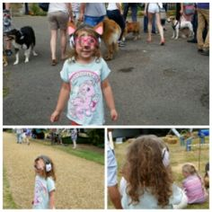 Dog Shows, Fetes and Fun Days
