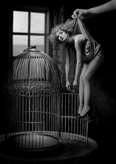 And as he plucked her from the cage her limbs fell slack. She no longer struggled for she had lost all hope. She would never again know freedom (Finish the story)