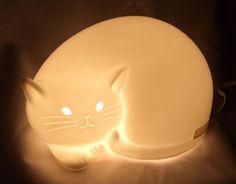 glowing cat !