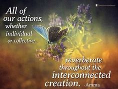 All of our actions, whether individual or collective, reverberate throughout the interconnected creation, Be Aware of your actions. www.dougdoeslife.com