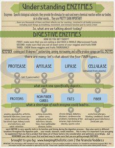 Want help understanding digestive enzymes?  Learn more: http://keepingitholistic.com/understanding-enzymes