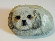 shih tsu painted on a rock!