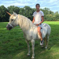 Jordy Baan, Pegasus, Horses, Animals, Unicorn, Animales, Animaux, Horse, Words