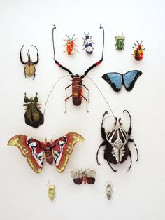 Lots of paper insects by artist Kate Kato. Look like a victorian entomology collection!