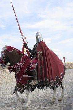 Compleet gekleed, van zijn lans tot zijn paard, om zijn huis te vertegenwoordigen.