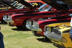 era Dodge Challengers at Spring Fling XXV Cool Sports Cars, Dodge Challenger, Spring, Vehicles, Car, Vehicle, Tools