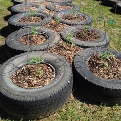 So far I have managed to find 11 abandoned tires around my neighborhood. Pretty excited to set something like this up.