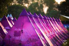 TomorrowWorld DreamVille (VIP) magic mushroom 4 person tent **OBO** in Collectibles Festival Camping, Edm Festival, Festivals, 4 Person Tent, World Of Tomorrow, White Dragon, Coachella, Vip, Cool Photos