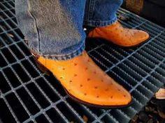 A Sampling of Boots