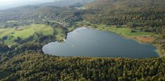 De Jura, een rustige heuvelachtige streek tussen de Vogezen en de Alpen. Een streek met volop natuur. Uitgestrekte bossen met bochtige rivieren en veel mer