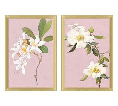 Bright petals and leaves pop out from a solid pastel background for a perfect floral portrait. White Flowers on Lavender owes its inspiration to the Art Nouveau movement, yet reveals a subtly modern twist. Leaf Wall Art, Framed Wall Art, Wall Art Decor, Wall Art Prints, Framed Prints, Pottery Barn Wall Art, Pottery Art, Botanical Wall Art, Floral Wall Art