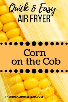 This Air Fryer Corn on the Cob recipe is so easy! Who would have thought that you could simply place corn on the cob in an air fryer and end up with the easiest and most delicious way of eating corn? #airfryer #ninjafoodi #sidedish #bbqside #howtocorn #cornonthecob #easy Healthy Fruits, Healthy Recipes, How To Make Corn, Good Food, Yummy Food, Homemade Vanilla, Food Categories, Grow Your Own Food, Air Fryer Recipes