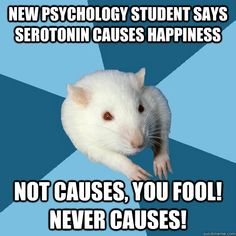 new psychology student says serotonin causes happiness not c - Psychology Major Rat
