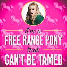 Fat Amy can't be tamed! Pitch Perfect Quotes, Watch Pitch Perfect, Tv Show Quotes, Movie Quotes, Funny Quotes, Pitch Pefect, Fat Amy, 2 Movie, Oui Oui