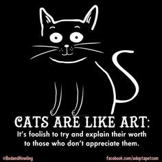 Cats are like art...
