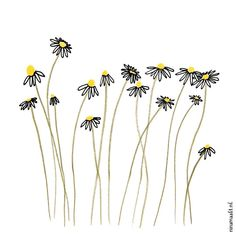 Find out how to draw a dandelion. We love flower doodles and the dandelion doodle is a simple drawing to try. Botanical Line Drawing, Botanical Art, Doodle Drawings, Easy Drawings, Flower Doodles, Doodle Flowers, Diy Flowers, Faux Flowers, Flower Ideas