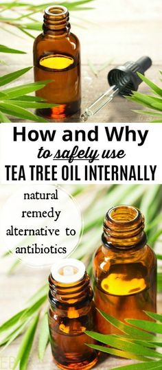 Why to Safely Use Tea Tree Oil Internally — Antibiotic Alternative Tea tree essential oil is a valuable anti-viral, anti-bacterial, anti-fungal and first aid tool. We'll talk about the risks, the benefits, how to use tea tree oil safely and in what health Tea Tree Essential Oil, Essential Oil Blends, Essential Oils, Natural Health Remedies, Herbal Remedies, Natural Cures, Tea Tree Oil Uses, Gaps Diet, Oil Benefits