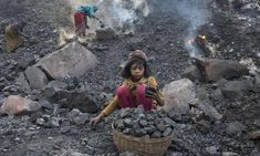 India plans to fell ancient forest to create 40 new coalfields | India | The Guardian Renewable Energy Companies, Energy Industry, Tribal People, Coal Mining, Natural Resources, The Guardian, Ecology, Environment, India