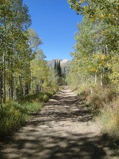 Baker Fork Trail American fork canyon
